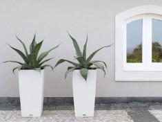 2 witte bloembakken